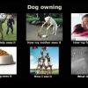 dog-owning