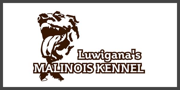 logo-luwigana
